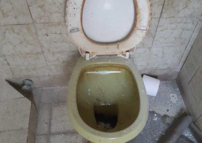 pulizie approfondite appartamenti Geibi Trieste